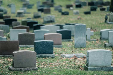 Back of Gravestones in a Old Cemetery during Cold day of Autumn stock vector