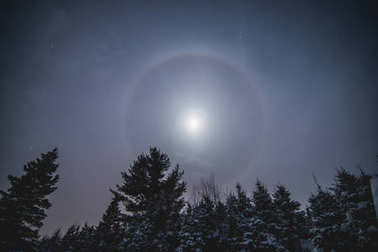 Moon Halo in Wild Forest during Winter