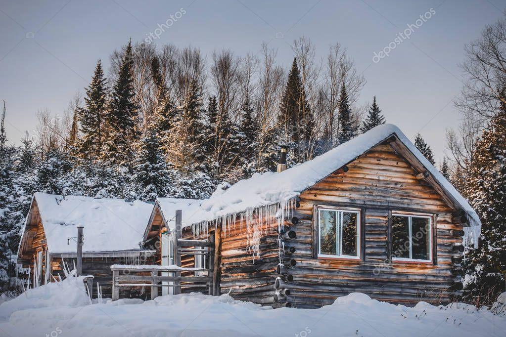 Canadian Round Log Wood Shack during Beautiful Winter Sunset