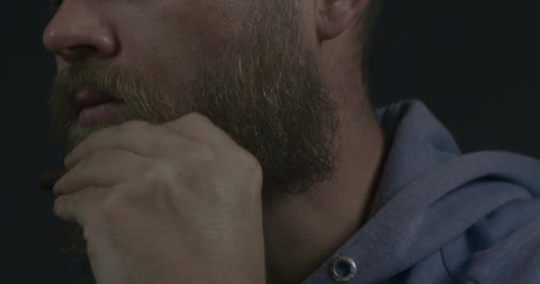 Bearded Hipster Man Combing His Beard And Mustache With A Wooden Comb. Cinema 4K Video