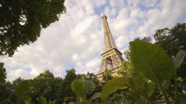 Eiffelova věž s velkými listy v popředí