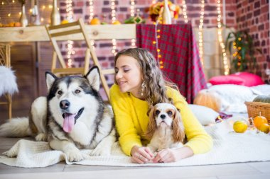 Cute teenage girl with blond curly hair in a studio with autumnal decorations with pumpkins and yellow leaves with a big malamute dog and a small dog. People and Dogs. Autumn mood