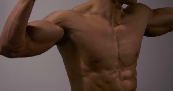 Hrudník a břicho Fitness Model 5