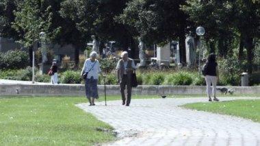 Seniors Couple Strolls in Park