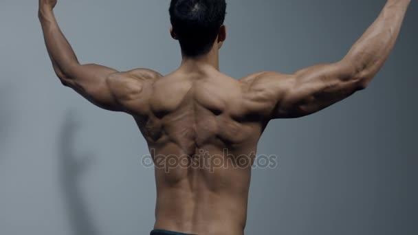 Fitness Model zobrazení zádové svaly