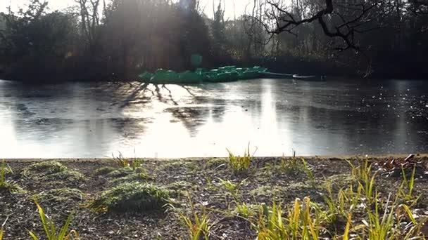 Na rybníčku na slunečné ráno