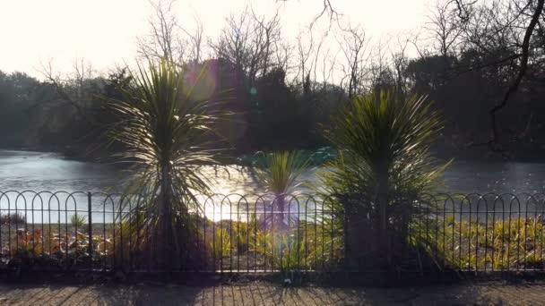 Zamrzlé na slunečné ráno v Londýně