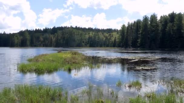 Calm River in Ontario