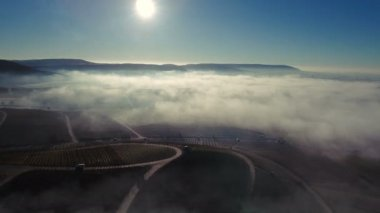 Rural Morning Scenery Aerial
