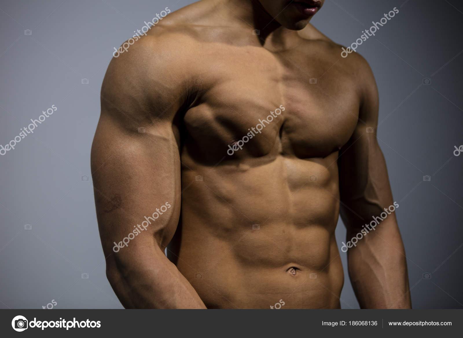 Fitness-Modell-Torso mit Brustmuskeln gebeugt — Stockfoto ...