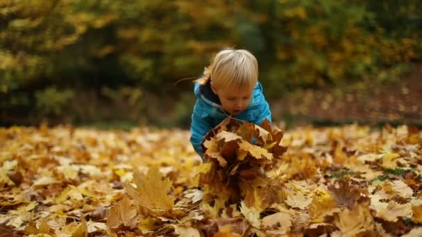 Childhood Moments: Boy Tossing Autumn Leaves
