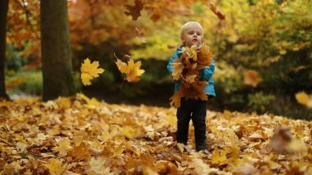 Momente der Kindheit: Junge wirft Herbstblätter 2