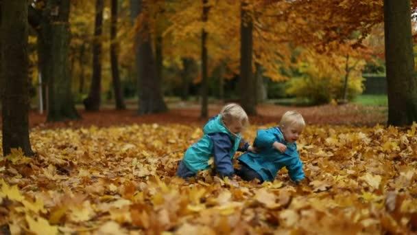 Děti si hrají na spadané podzimní listí v parku