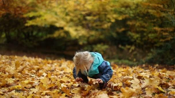 Okamžiky dětství: Dívka si hraje s poklesla podzimní listy 2