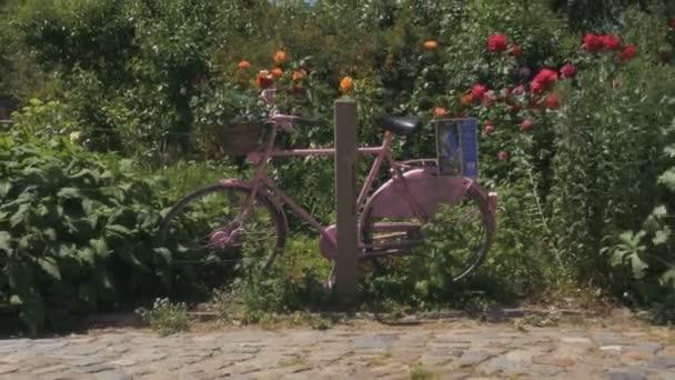 Rózsaszín kerékpár és nyári virágos kert