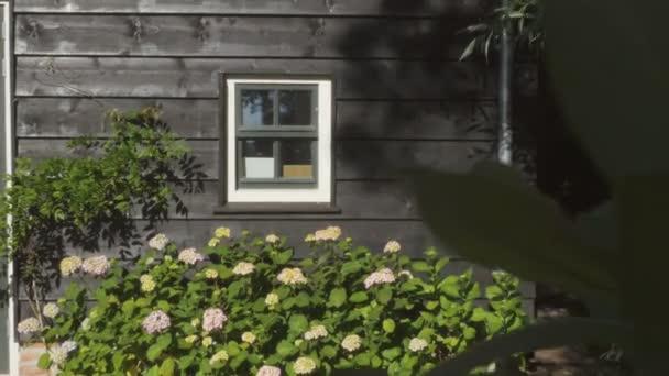 Garten Blume Bush unter einer Witwe — Stockvideo © nektarstock ...