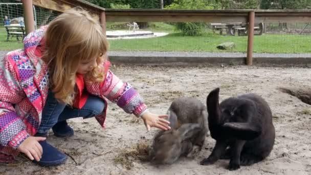 Mädchen, die Interaktion mit Hasen auf einem Bauernhof