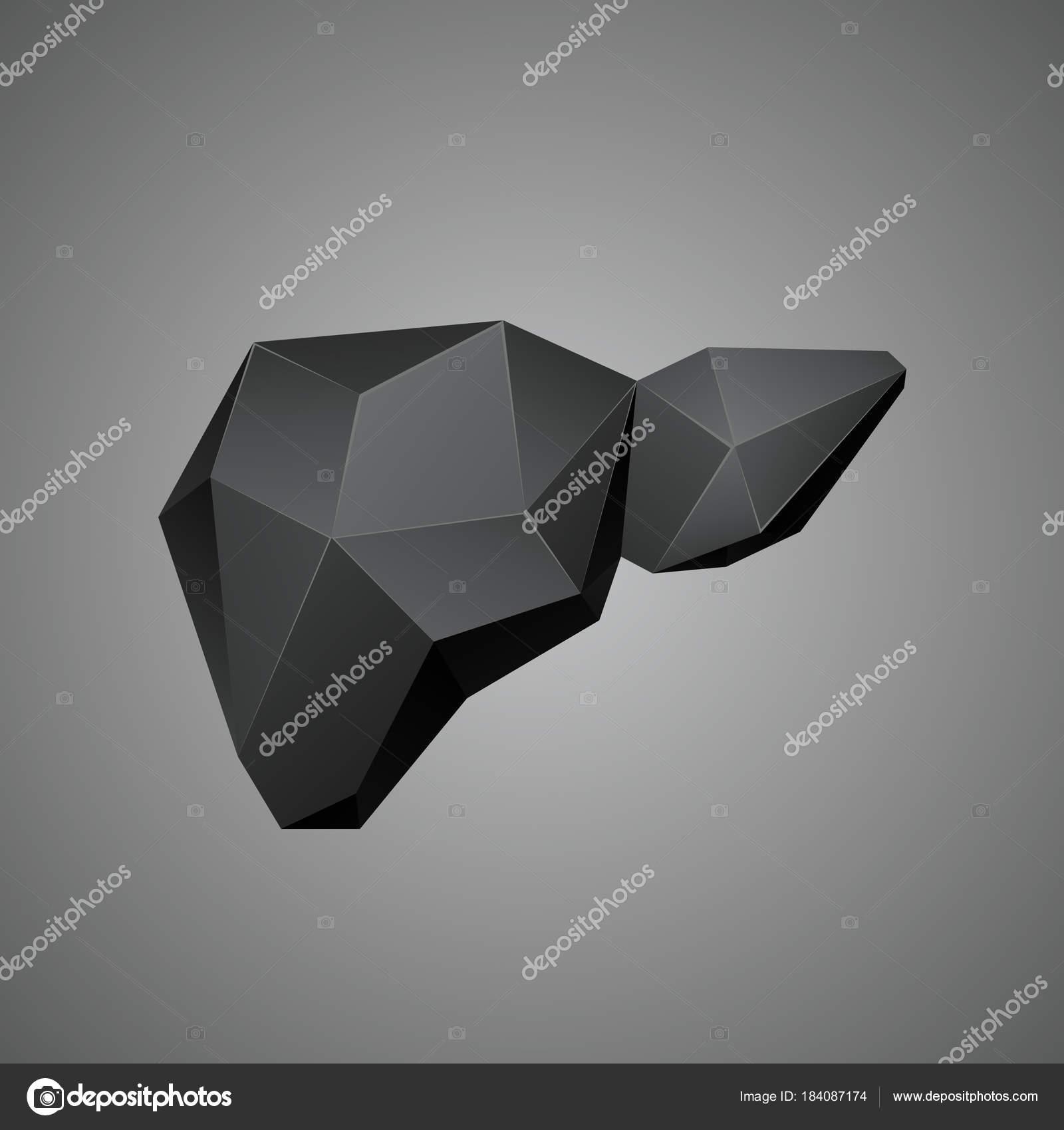 Hígado humano polivinílico baja negro sobre un fondo gris. Órgano de ...