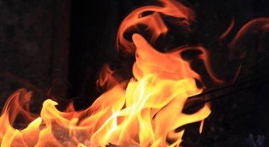closeup Fire flames