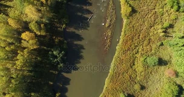 Letecký pohled na malé řeky s porosty. Majestátní krajinu