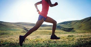 """Картина, постер, плакат, фотообои """"молодая спортсменка бегает по высокогорным травяным дорожкам цветы розы модульные города"""", артикул 357729004"""