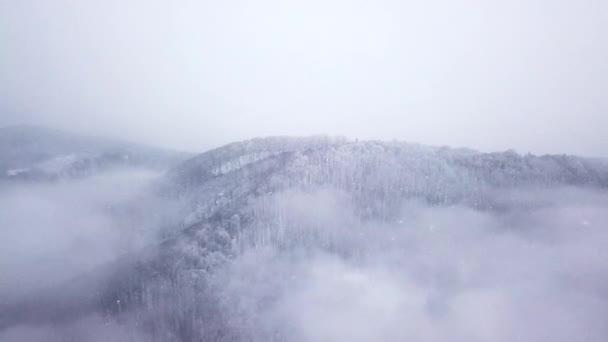 Zimní hora zasněžený les v mracích