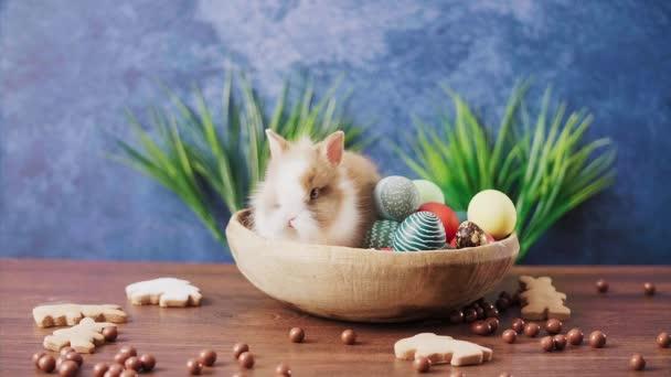 Netter Osterhase im Korb mit bunten Eiern und Bonbons auf dem Holztisch. Osterfestdekoration, Osterkonzept Hintergrund.