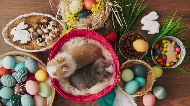 Easter bunny in basket with colorful eggs on wooden table. Easter holiday decorations, Easter concept background.