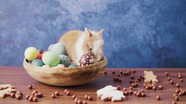 Cute Easter bunny in basket with colorful eggs and candies on wooden table. Easter holiday decorations.