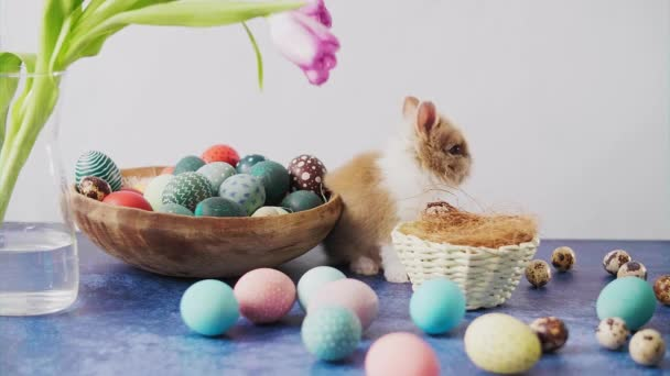 Cute Easter bunny on table with colorful eggs and tulips. Easter holiday decorations.