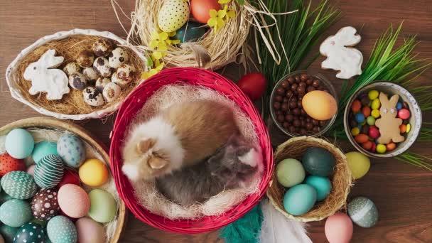 Velikonoční zajíček v košíku s barevnými vejci na dřevěném stole. Velikonoční sváteční dekorace.