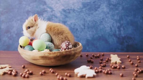 Aranyos húsvéti nyuszi kosárban színes tojásokkal és cukorkákkal a fa asztalon. Húsvéti ünnepi dekorációk, húsvéti koncepció háttér.