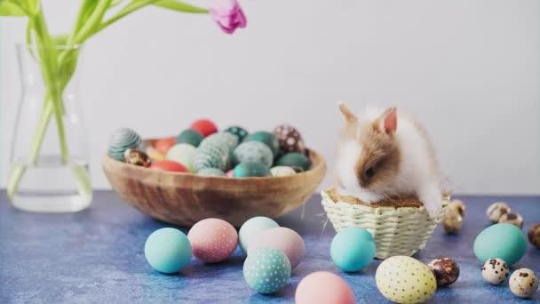 Aranyos húsvéti nyuszi az asztalon színes tojásokkal és tulipánokkal. Húsvéti ünnepi dekorációk, húsvéti koncepció háttér.