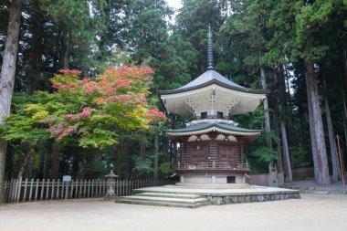 Autumn Pagoda in Koyasan Wagayama Japan