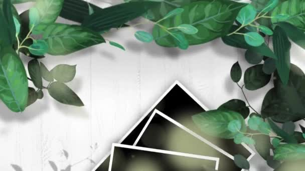 Animation Leaf keret fekete hely és egyszerű szöveg.