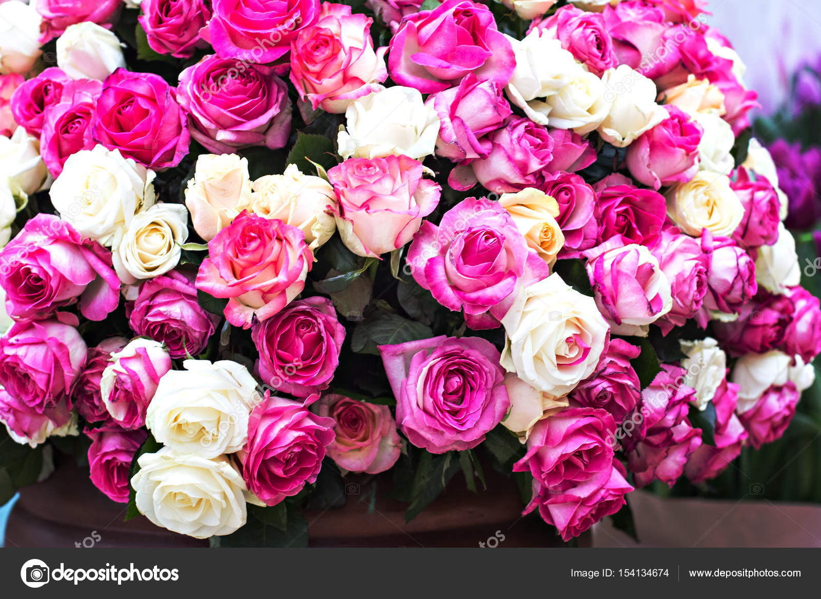 roses gros bouquet motif de roses photographie julialototskaya 154134674. Black Bedroom Furniture Sets. Home Design Ideas