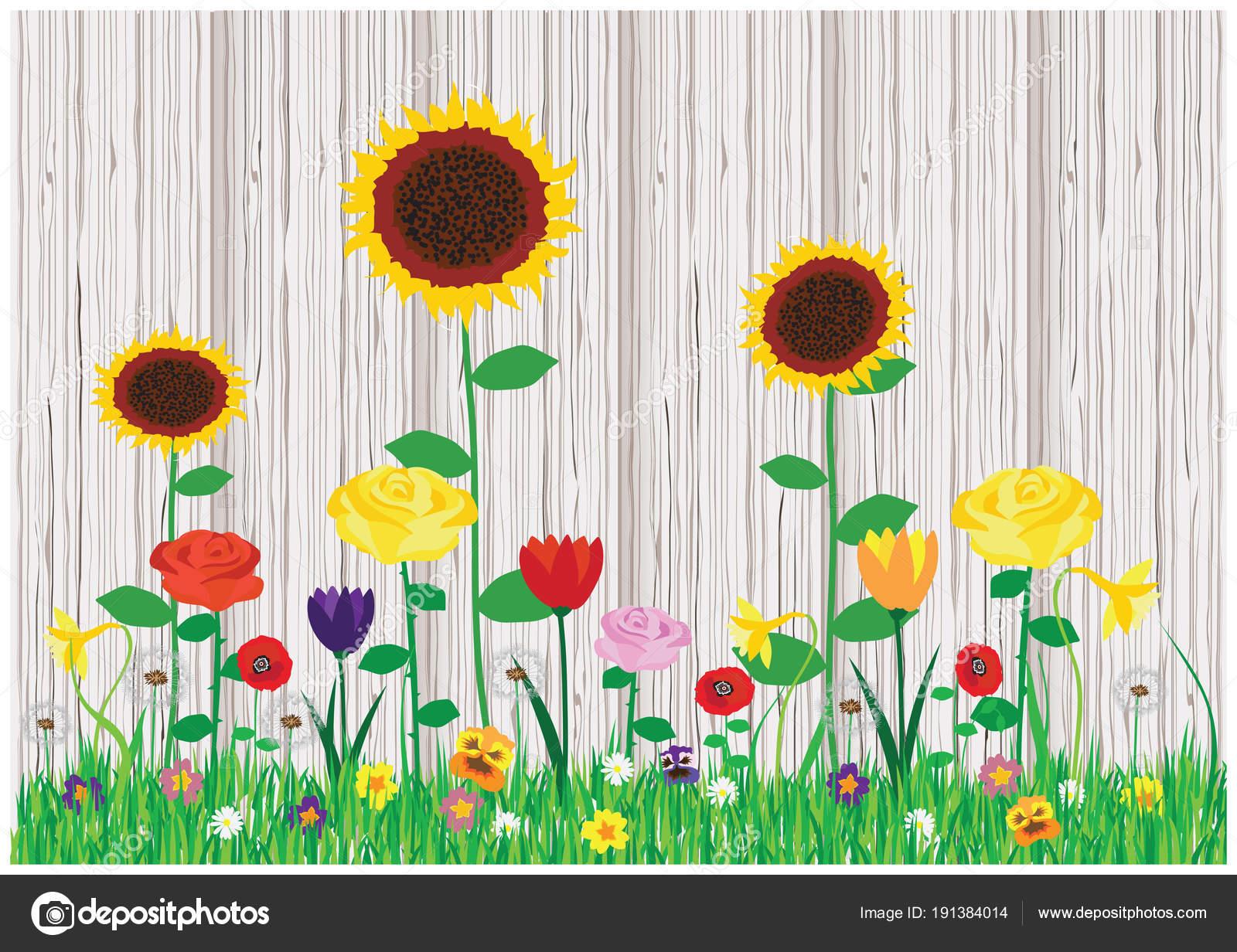 Color vector cartoon illustration of beautiful blooming spring and color vector cartoon illustration of beautiful blooming spring and summer flowers stock vector izmirmasajfo