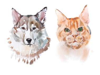 red-headed cat and dog aquarelle drawing.