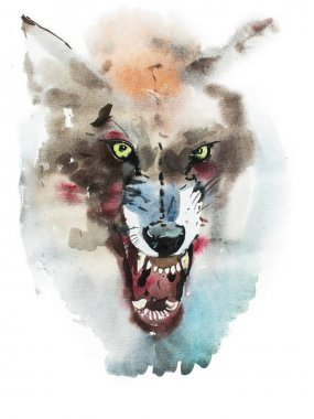 Watercolor drawing of angry wolf