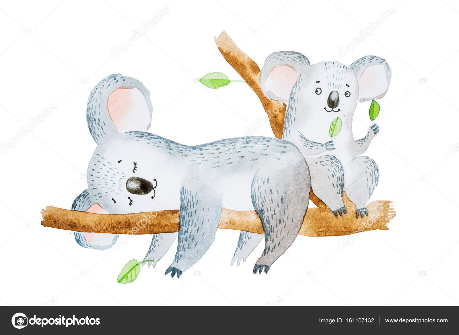 Images Eucalyptus Cartoon Watercolor Illustration Of Two Adorable Cartoon Koala Bears Sitting On Eucalyptus Tree Branch Stock Photo C Undrey 161107132 Download the perfect eucalyptus tree pictures. https depositphotos com 161107132 stock photo watercolor illustration of two adorable html