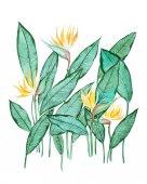 Handgezeichnete Aquarellmalerei von grünen Blättern mit kleinen gelben Blüten vor weißem Hintergrund