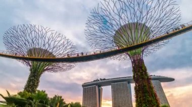 Timelapse Sunset Landscape of Gardens by the bay in Singapore. August 2017