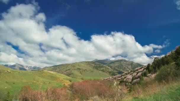 Španělské jaro hory s kvetoucími stromy a krásné mraky v timelapse 4k