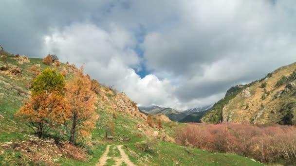 Timelapse pohled na krásnou krajinu v Alpách s zelené louky a kvete oranžovými stromy a vrcholky hor v pozadí mraků jarní v timelapse 4k