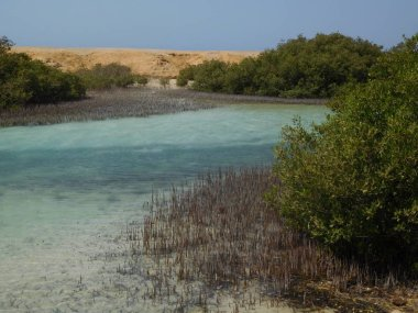 Sea view in Ras Mohamed national park