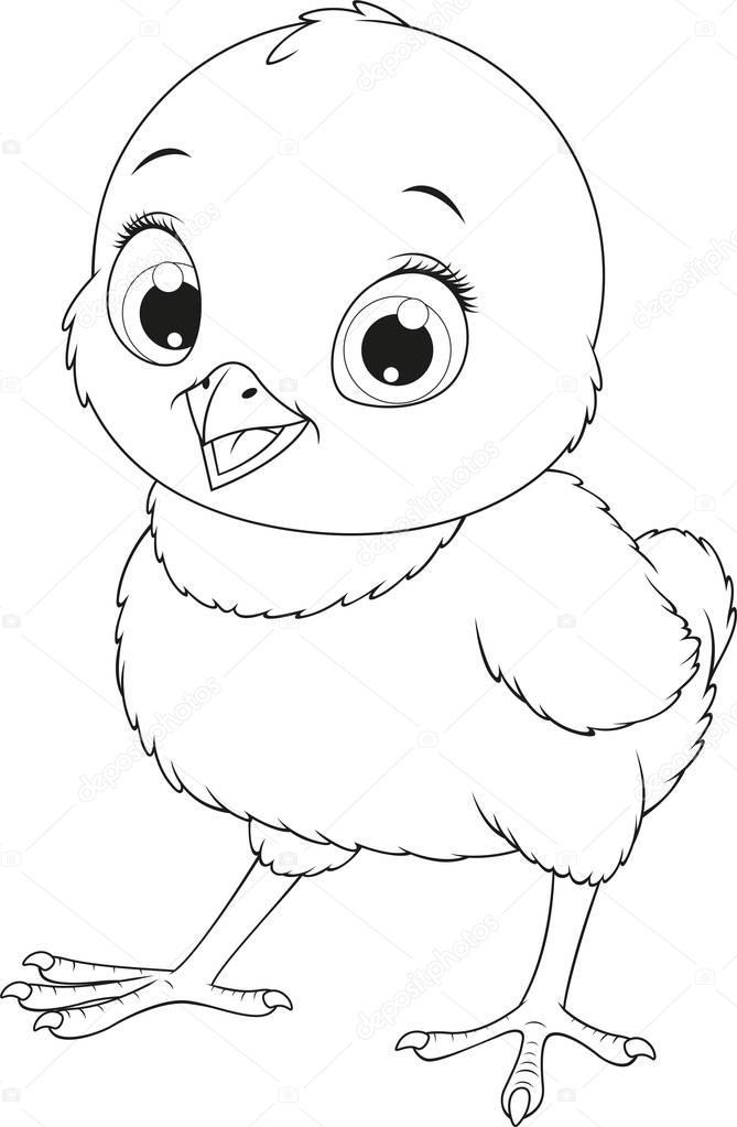 Fotos: dibujo de pollo para colorear | Poco pollo divertido — Vector ...