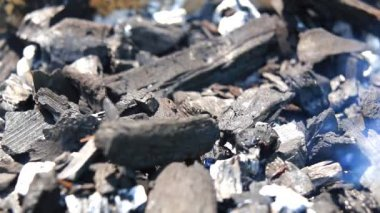 Preparazione ed illuminazione su un carbone di legna per barbecue