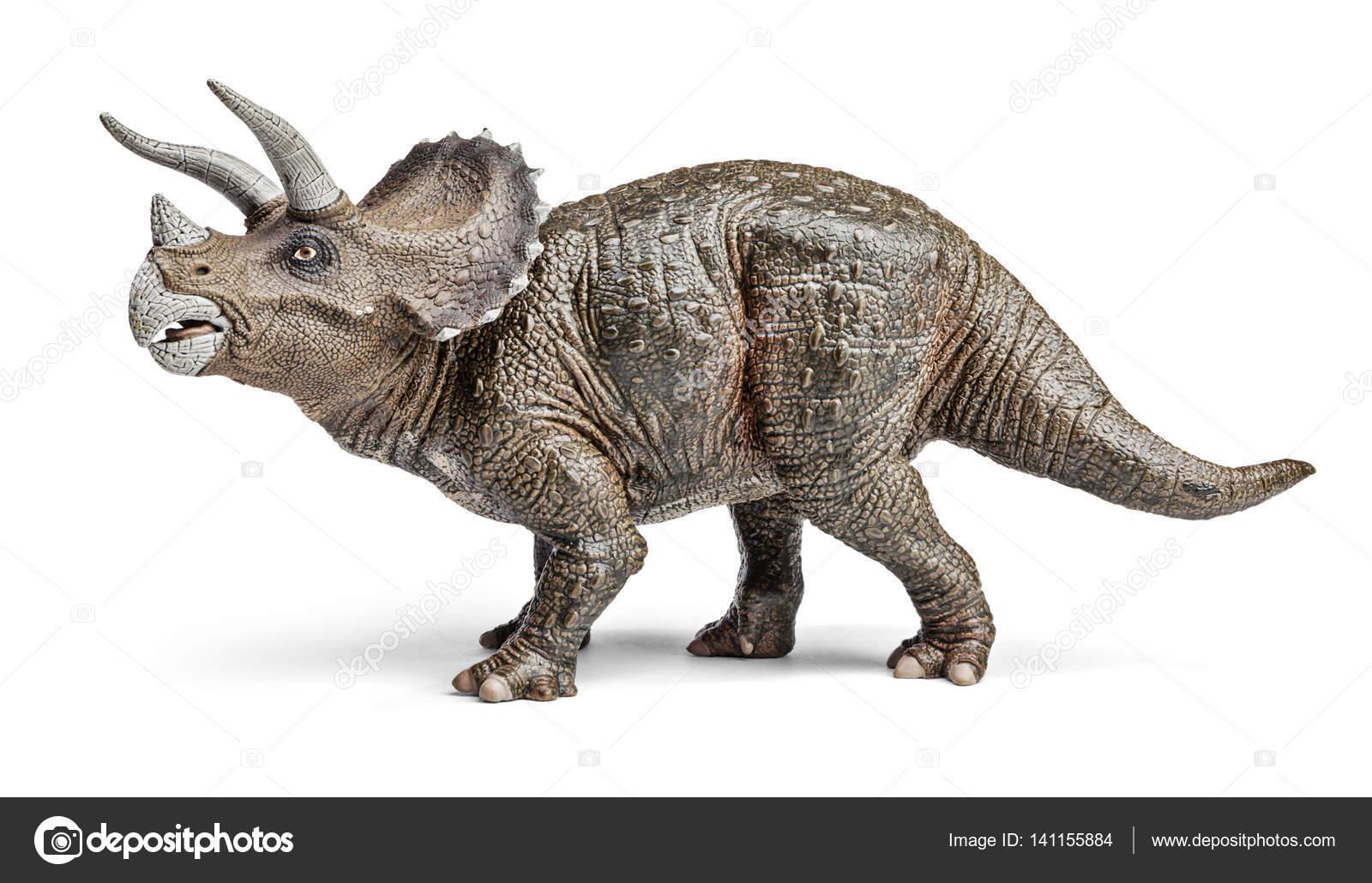 triceratops dinosaurs toy stock photo gedzun 141155884