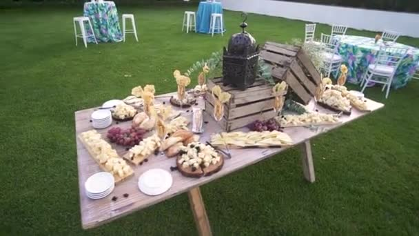 Cheese table of Emmental, Camembert, Parmesan, blue cheese closeup, with bread sticks and grapes on wooden table