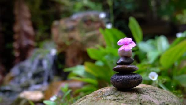 Oblázky naskládané do pyramidy s růžovým květem navrchu. Mini vodopád a skalní zahrada v pozadí. Zen, lázně, krása a wellness koncept.